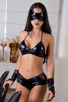 Fantasia Mulher Gato Sexy - Garota Veneno